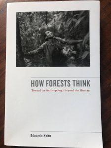 Page couverture du livre How Forests Think de Eduardo Kohn